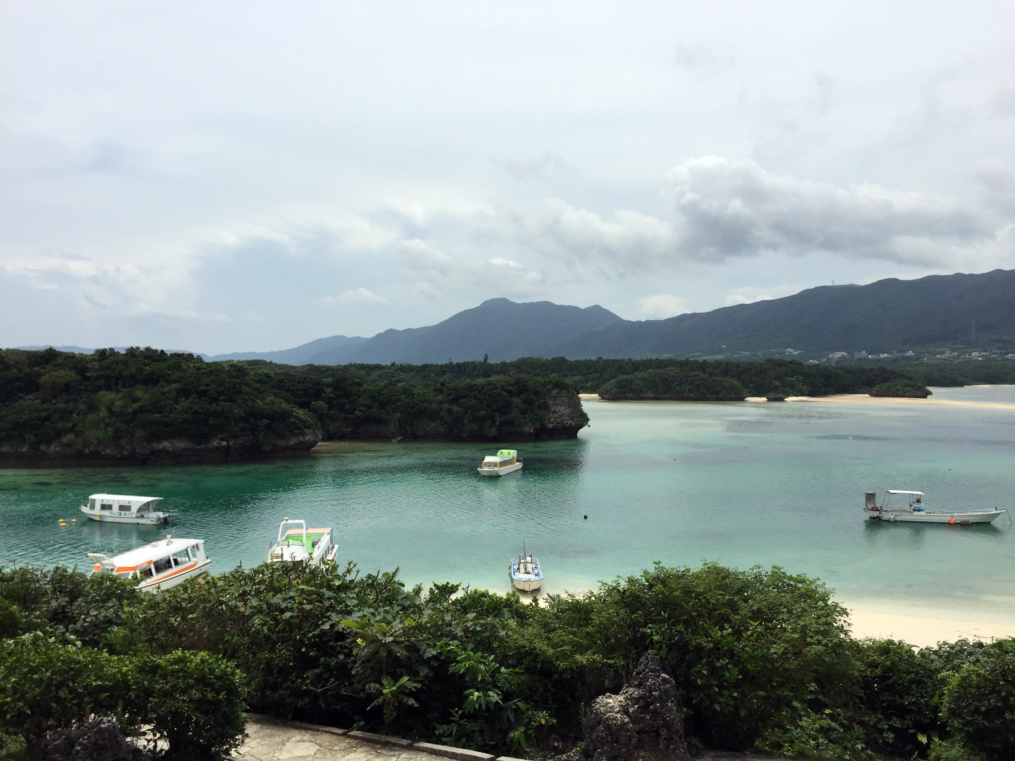 美ら島からの、、激励!