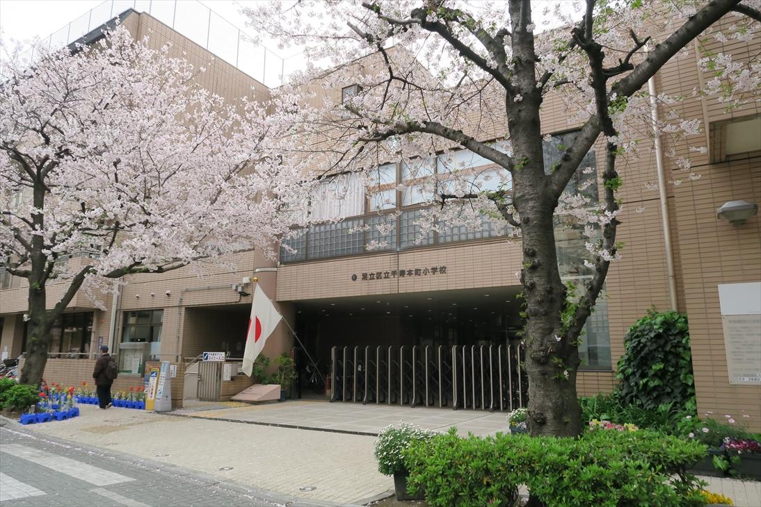 新学期はイイですね。桜が咲くころ一年生!