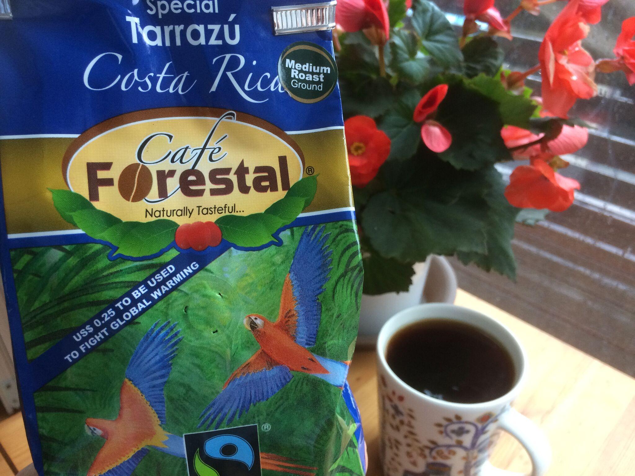 本日のコーヒー:カフェ・フォレスタル・スペシャル・タラスー