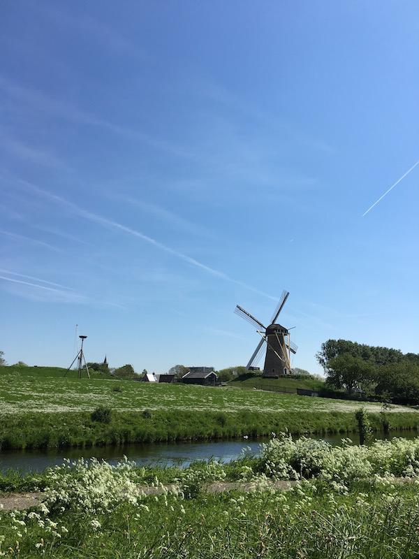 オランダに引っ越しました。