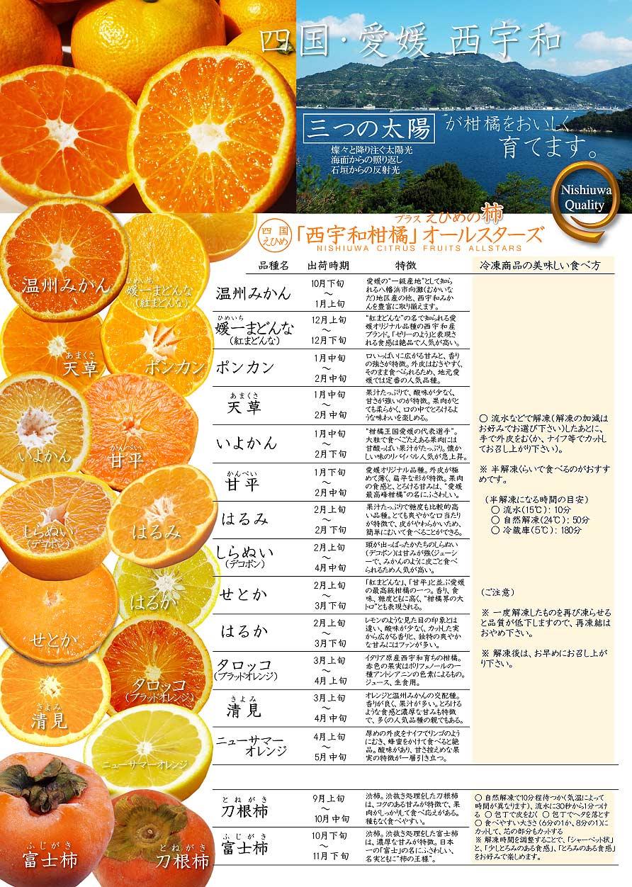 愛媛・西宇和 柑橘オールスターズをご紹介します!