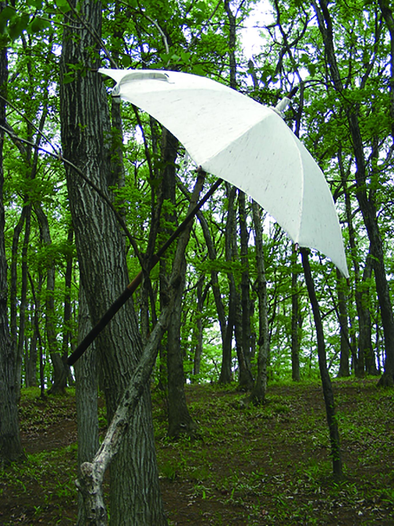日傘の追加発注について