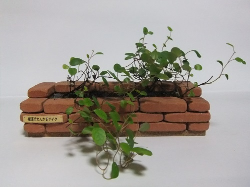 小さなレンガで作る小物雑貨の物語♪ お部屋の中で花壇が楽しめます♪