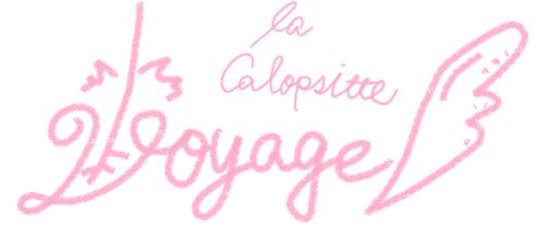 Voyage la Calopsitte
