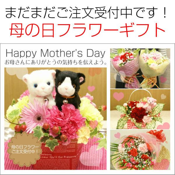 お母さんへ感謝の気持ちを込めて…母の日フラワーギフトまだまだご注文受付中です!!